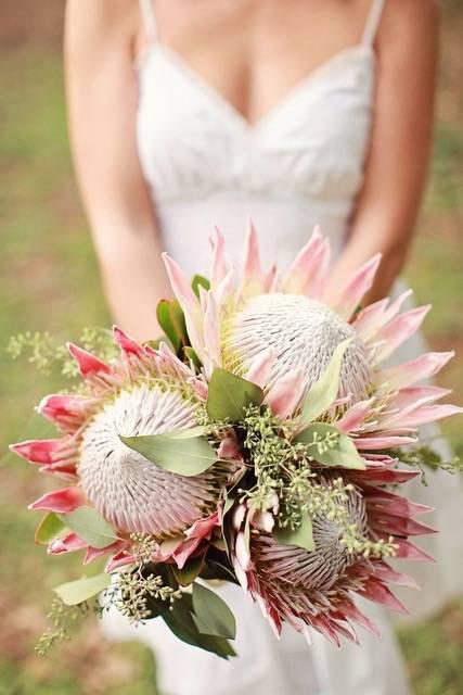 Il etait une fleur - House of Weddings - 4